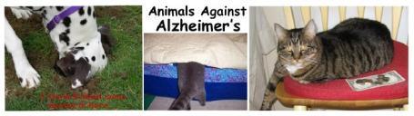 animalsagainstalzheimers